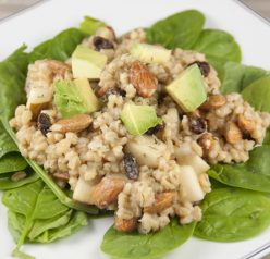 Pear Almond Barley Salad. Great side dish for the 4th of July or any picnic in the summer!