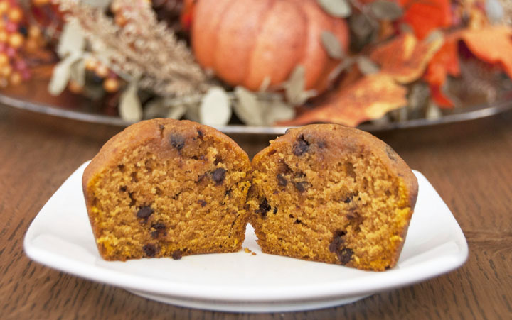 This dense Pumpkin chocolate chip muffins recipe uses canned pumpkin, spices and are loaded with mini chocolate chips. They can be made any time of year, but are especially good during the fall time!