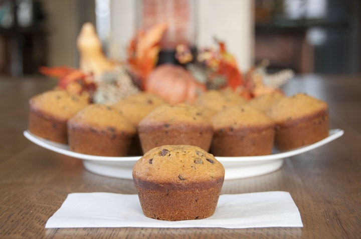 This dense Pumpkin chocolate chip muffins recipe uses canned pumpkin, spices and are loaded with mini chocolate chips. They can be made any time of year, but are especially good during the fall!