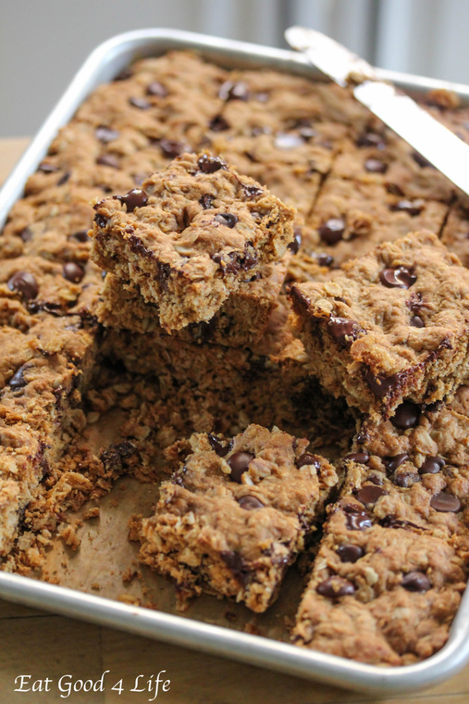 Melt-in-your-mouth Dark Chocolate and Oatmeal Bars are a healthy cookie recipe option that taste so good no one will even realize that they aren't bad for you!