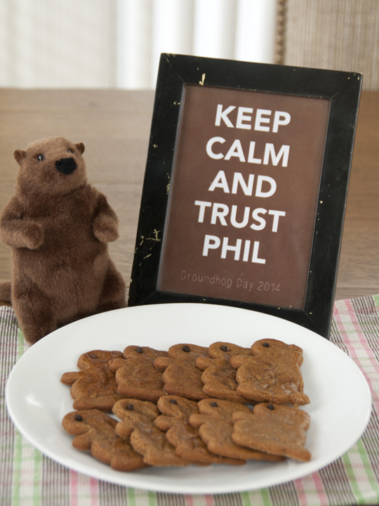 How To Throw A Groundhog Day Party