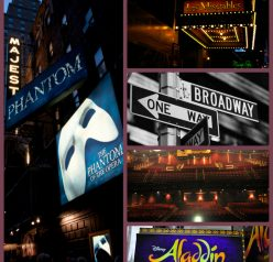 My reviews on the Broadway shows: Aladdin, Phantom of the Opera, Les Miserables, Rock of Ages.