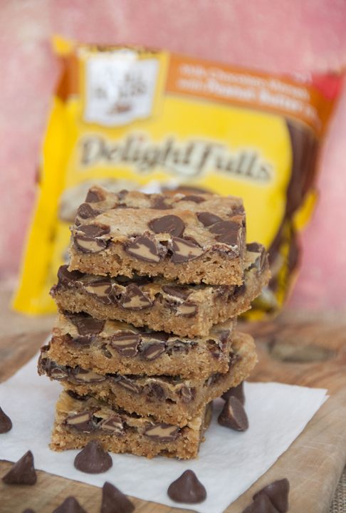 Gooey-Chocolate-Peanut-Butter-Bars-Recipe (3)