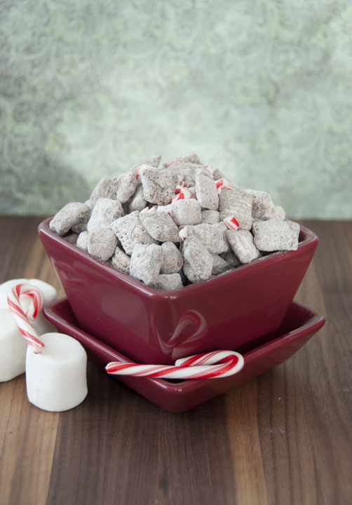 Muddy buddies made with Rice Chex, hot chocolate mix, and melted chocolate for an easy holiday or winter snack!  This will be your new favorite version of puppy chow.