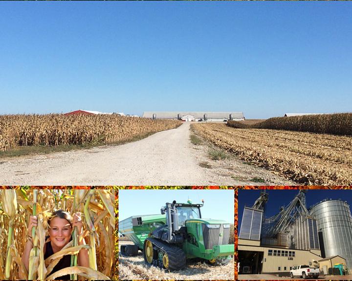 Brenneman Pig and Pork Farm, Washington County Iowa