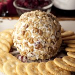 Cranberry Walnut Cheese Ball
