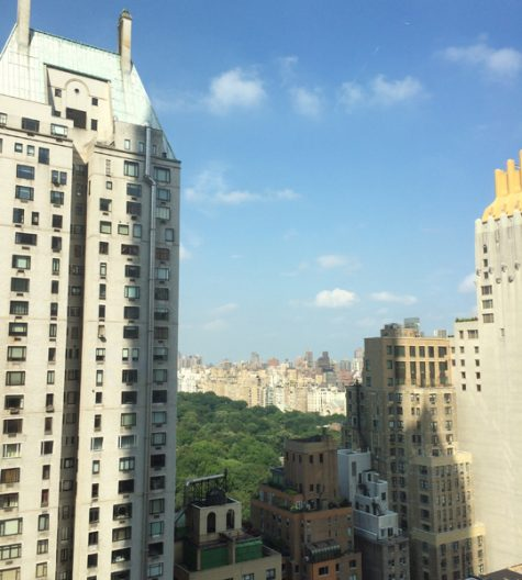 View of Central Park from the Park Hyatt New York in Times Square.