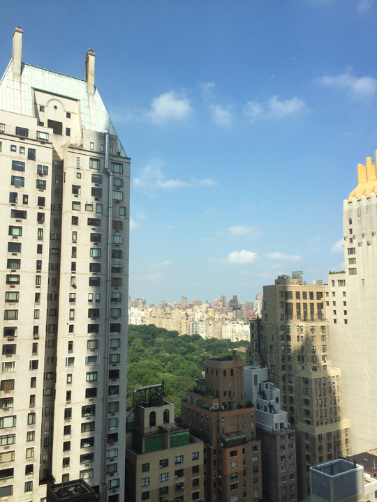 View of Central Park from the Park Hyatt New York City in Times Square.