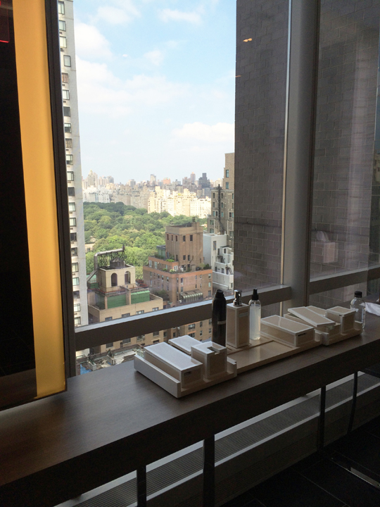 View of Central Park from the spa at the Park Hyatt New York City. Oribe hair products are free to use.