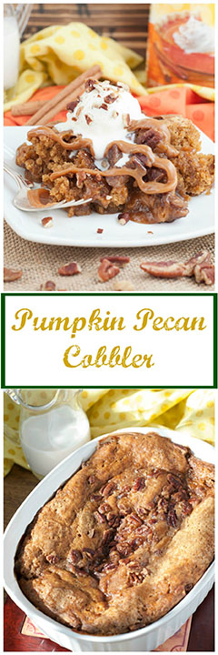 Pumpkin Pecan Cobbler recipe is a rich, easy alternative to traditional pumpkin or pecan pie and is the perfect dessert for fall holiday season baking!