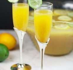 This easy, four season Lemon-Lime Champagne Party Punch recipe will be a hit at any holiday party, bridal or baby shower, and New Year's Eve! Non-alcoholic version included!