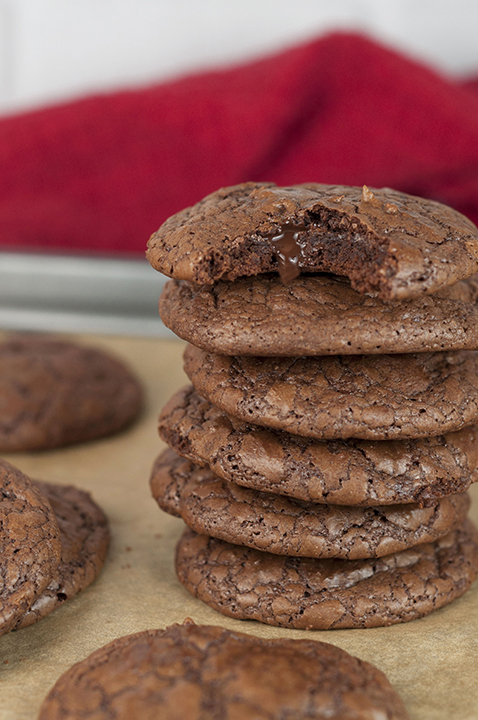 This recipe for Double Chocolate Truffle Cookies is for serious chocolate dessert lovers! Dense, gooey, fudge-like cookies with chocolate chips baked right into them.