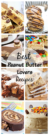 Here are the Best Peanut Butter Lovers Recipes in the world! If you have a love for peanut butter, these sweet and savory recipes will satisfy your craving!