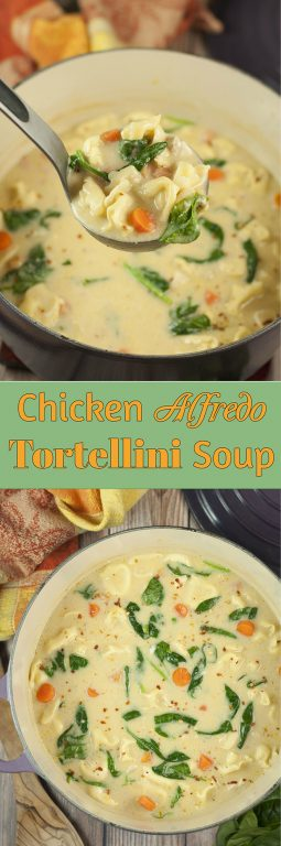 Easy 30 Minute Chicken Alfredo Tortellini Soup where the flavors blend together so well everyone will be begging for seconds! The Parmesan Alfredo sauce is the special ingredient that makes this hearty soup rich and creamy.