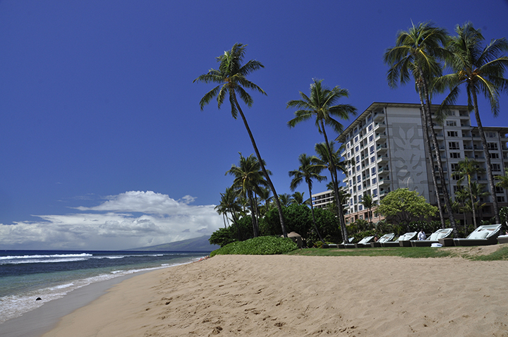 Best Things to do in Maui, Hawaii | Wishes and Dishes