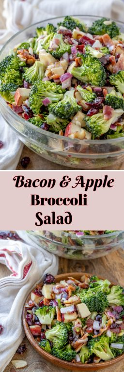 Easy Bacon and Apple Broccoli Salad is the perfect potluck or summer picnic side dish loaded with bacon, almonds, and sweet apples! You can make this creamy salad with the sweet homemade dressing in less than 20 minutes!
