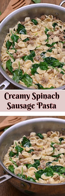 Creamy Spinach Sausage Pasta is an easy pasta dish recipe (only 30 minutes start to finish): pasta and seasoned Italian sausage tossed in a simple, light cream sauce making it the perfect family weeknight meal!