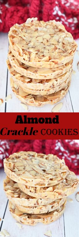 Thin and chewy Almond Crackle Cookies are only 3 ingredients but with big flavor and are a great holiday, Christmas, or Thanksgiving dessert recipe idea!