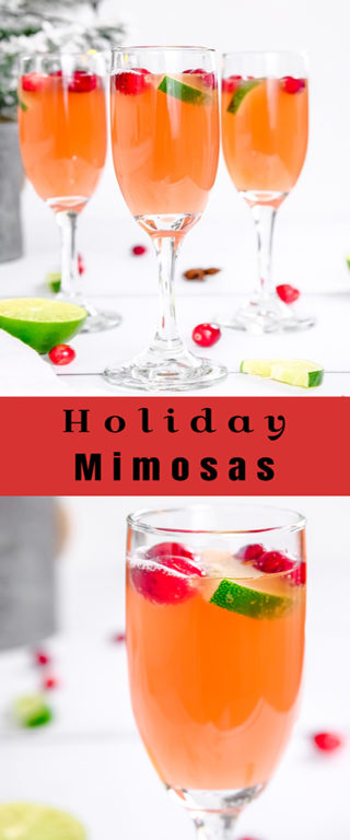 This is an incredibly festive Holiday Mimosas recipe for whether you're hosting a holiday morning brunch or an elegant holiday party that will brighten everyone's day!